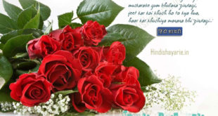 Happy Rose Day Shayari, Rose Day Hindi SMS, Rose Day Hindi FB Status