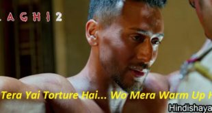 All Best Dialogues of BAAGHI 2 Hindi Movie Hit Dialogues